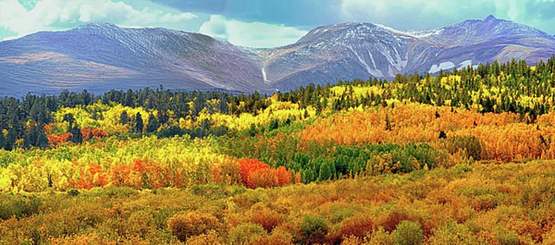 Colorado Landscape by OLenaArt Lena Owens