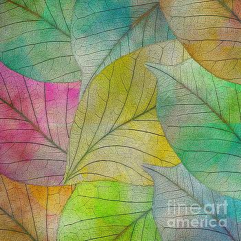 Colorful Leaves by Klara Acel
