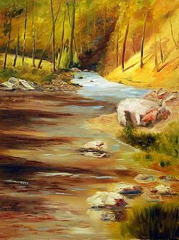 Cool Mountain Stream by Phil Burton