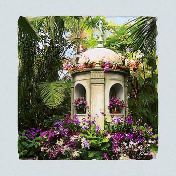 Cuban Orchid Show by David Klaboe