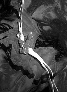 Das Laecheln Der Unendlichen Barmherzigkeit by Arno Schaetzle