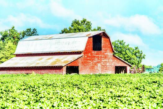 Barry Jones - Delta Red Barn - Rural Landscape