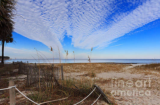 Dunes and vegetation at Hunting Island State Park by Louise Heusinkveld