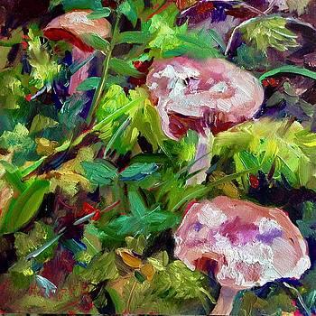 Dwellers in the Woods by Carol Hopper
