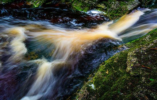 Elakala Falls #6 by Dan Girard