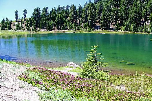 Emerald Lake by Irina Hays