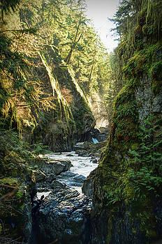 Englishman River Falls  by Marilyn Wilson
