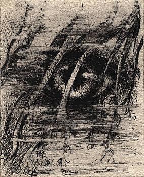 Eye Of The Storm by Rachel Christine Nowicki