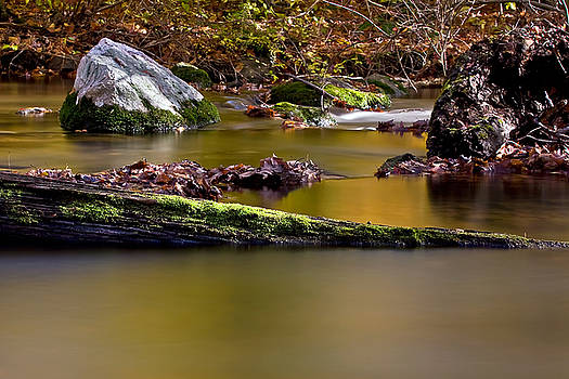 Fall Colors by Greg Gard