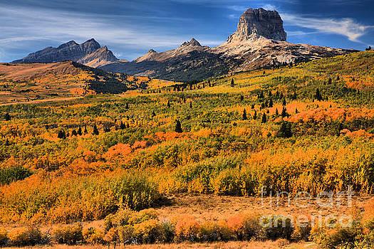 Adam Jewell - Fall Foliage At Chief Mountain