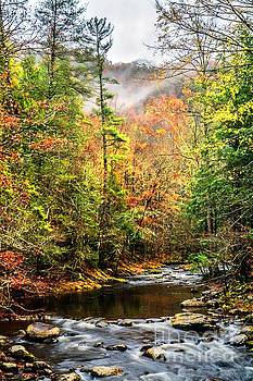 Fall in the Mountains by Debbie Green