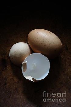 Edward Fielding - Farm Fresh Eggs