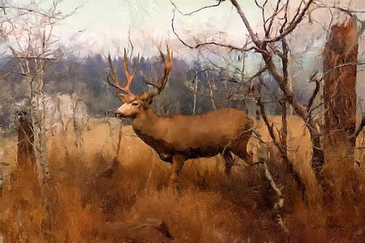 Field Deer by Gary Grayson