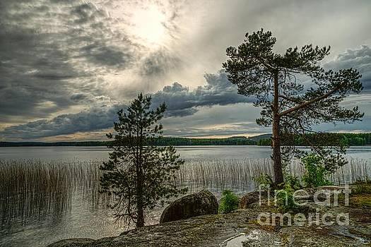 Finnish nature by Markus Hovikoski
