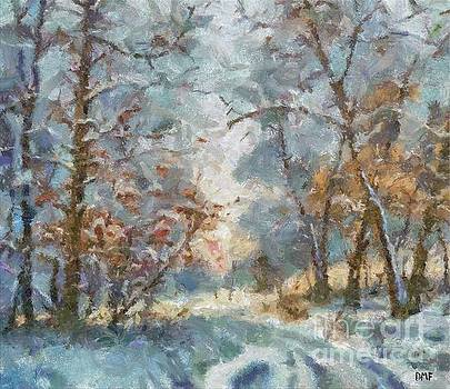 First Snow by Dragica Micki Fortuna