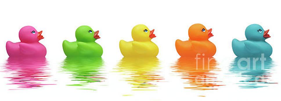Five Rubber Ducks by Martin Williams