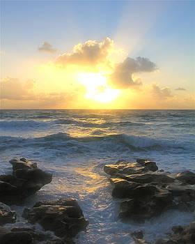 Florida Sunrise 2 by Lindsey Cockrum
