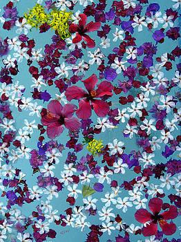 Kurt Van Wagner - Flower Fantasy Guatemala