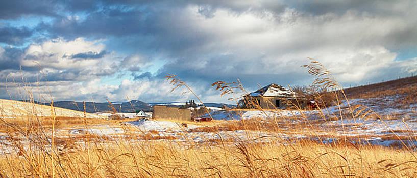 Forgotten Farmhouse by Theresa Tahara