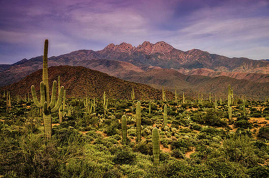 Four Peaks Golden Hour  by Saija Lehtonen