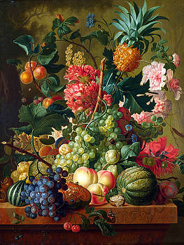 Fruit and Flowers by Paulus Theodorus