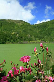 Gaspar Avila - Furnas, Azores islands