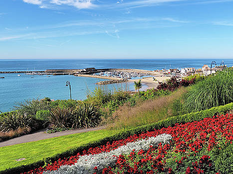 Gardens Overlook - Lyme Regis by Susie Peek