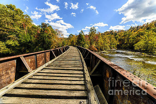 Gauley River Railroad Trestle by Thomas R Fletcher