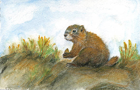 Golden Marmot by Maureen Ida Farley