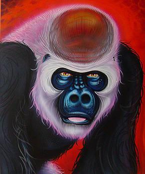 Gorilla by Joshua South