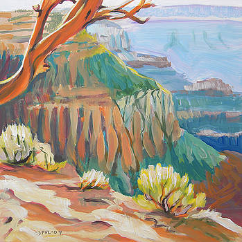 Grand Canyon 3 by Pam Van Londen