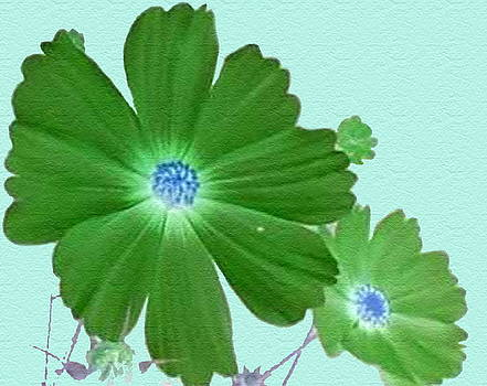 Green Blooms by Shirley OBrien