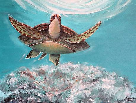 Green Sea Turtle by Bernadette Krupa
