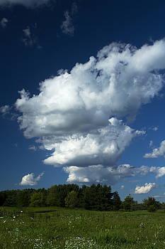 Hello Blue Sky by Amanda Kiplinger