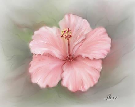 Hibiscus  by Bonnie Willis