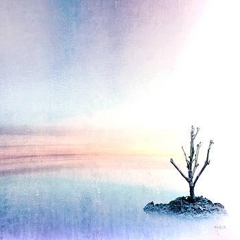 Horizon by Bob Orsillo