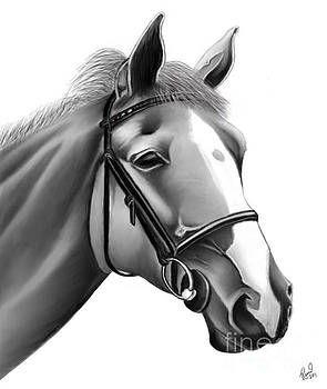 Horse by Rand Herron