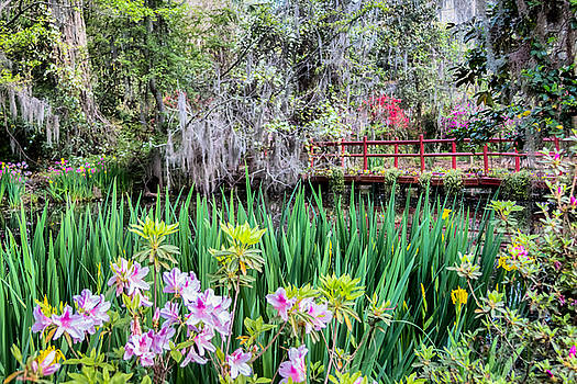 Japanese Garden by Lynne Jenkins