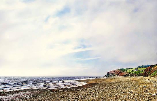 Joggins Beach Nova Scotia by Marion McCristall