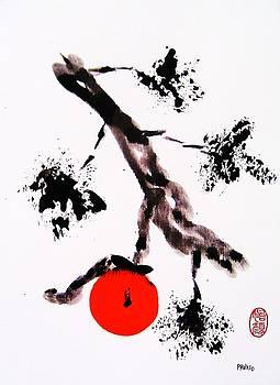 Roberto Prusso - Jukushita kaki