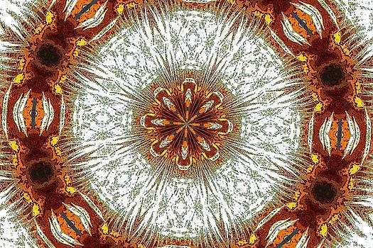 Kaleidoscope by Carolyn Ricks