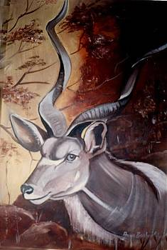 Kudu by Ansie Boshoff