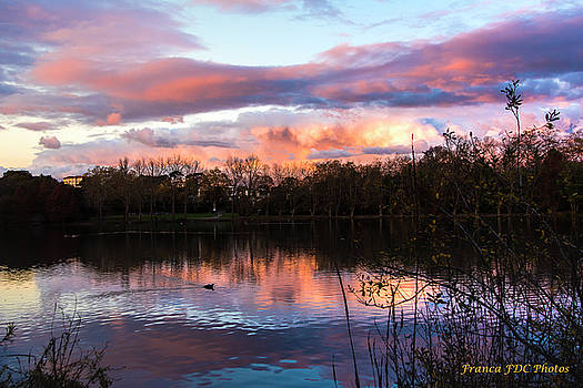 Lac Marion Biarritz by Francoise Dugourd-Caput