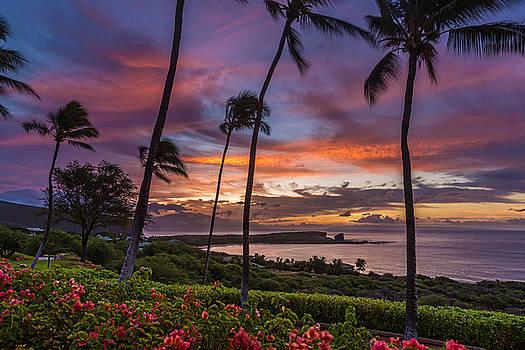 Lanai Sunrise by Leigh Anne Meeks