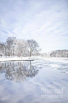 Evelina Kremsdorf - Last Winter