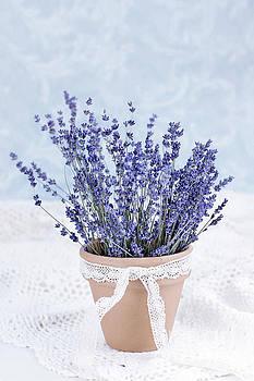 Lavender by Stephanie Frey