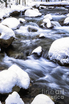 Leatherwood Creek and Heavy Snow by Thomas R Fletcher