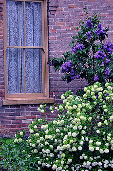 Lilacs And Lace by Juls Adams