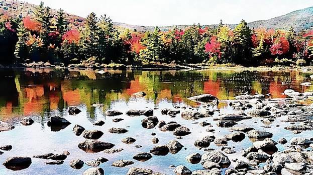 Lily Pond, Kancamagus Highway - New Hampshire  by Joseph Hendrix