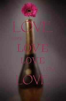 Love by Jeremy Sage